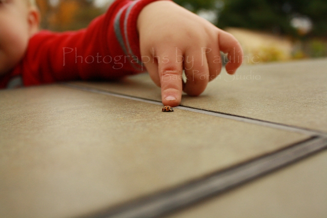 Pointing out a ladybug.
